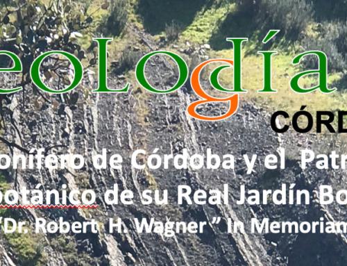 El Carbonífero de Córdoba y el Patrimonio Paleobotánico de su Real Jardín Botánico: In memoriam Doctor Robert H. Wagner